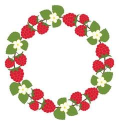 Raspberry Wreath vector image