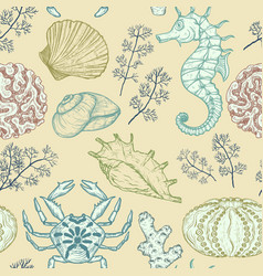 Seamless pattern with sea shells corals sealife vector