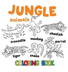 Set of funny jungle animals coloring book vector