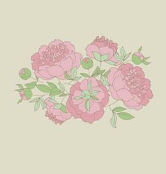 tender peony flower vector image