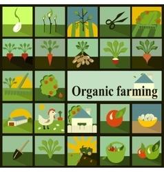 Set of icons Organic farming vector image vector image