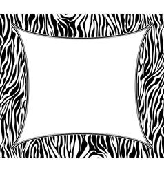 frame with abstract zebra skin texture vector image vector image