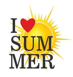i love summer icon color vector image