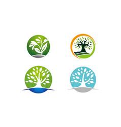oak tree template set vector image