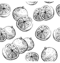 seamless background with citrus fruit vector image