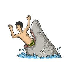 Shark eat man sketch vector