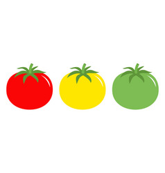 Tomato leaves icon set line red yellow green vector