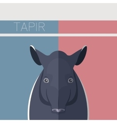 Flat postcard with Tapir vector image