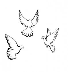 three dove vector image