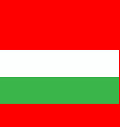 flag hungary in flat design flag hungary vector image