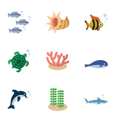 Flat icon sea set of seafood algae cachalot and vector