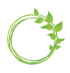green leaves or leaf graphic icon design vector image