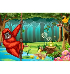 Orangutan in jungle vector