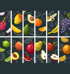 set fruits whole half and slice vintage vector image