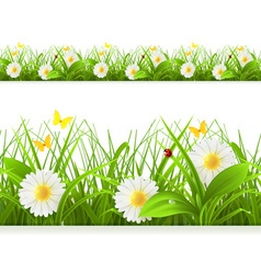 Spring green grass seamless border Detailed vector image
