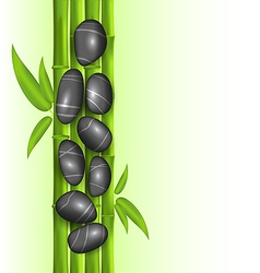 Spa therapy decoration with bamboo and stones vector image