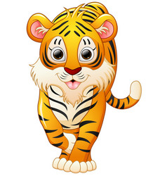 cute tiger cartoon isolated on white background vector image