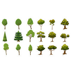 set of trees of various kinds cartoon style and vector image