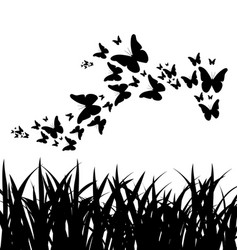 silhouette of grass and flying butterflies vector image