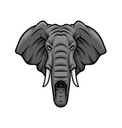 elephant head tusks and trunk mascot icon vector image vector image