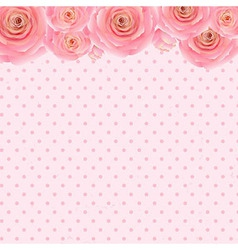 Pink Rose Background vector image