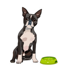 a of cute and kind dog with vector image
