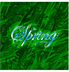 Floral word spring over grass background vector