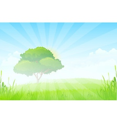 Green Landscape with Sun Clouds Grass and one Tree vector image
