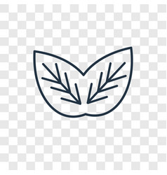 leaf cleanin concept linear icon isolated on vector image
