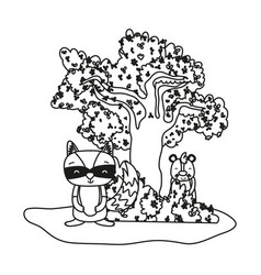 Outline raccoon and bear animals with tree and vector