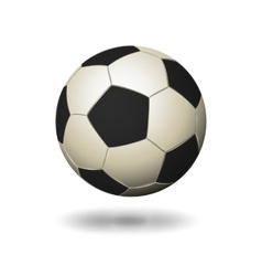 Soccer ball icon white and black color vector