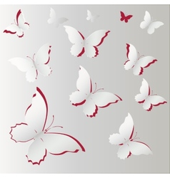 white Lace butterfly on gray background vector image