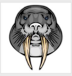 walrus head mascot vector image vector image