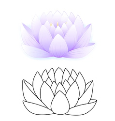 blue lotus vector image