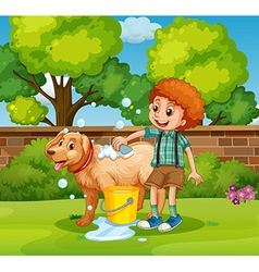 Boy giving dog bath in park vector