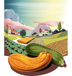 Cultivated agricultural landscape with ripe vector