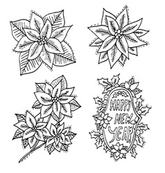 Hand drawn poinsettia flowers set vector