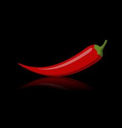 Hot chilli papper vector