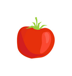 red tomato isolated icon in cartoon style vector image