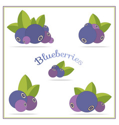 Set with blueberries icons isolated on white vector