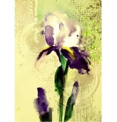 Beautiful violet iris flower vector image vector image
