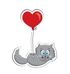 Cat with heart vector image vector image
