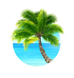 Background palm tree and ocean vector