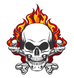 Skull in flame vector