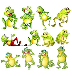 Set of frogs vector image vector image