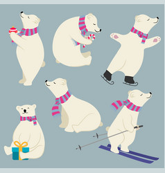 cute flat design polare bears collection vector image