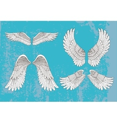 hand drawn white wings vector image