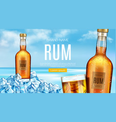 Rum bottle and glass stand heap ice cubes vector
