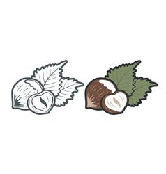 Vintage emblems hazelnuts vector
