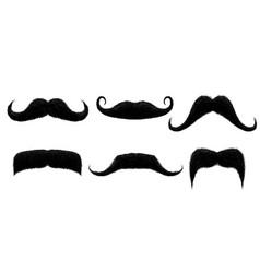 vintage moustache funny retro mustache fake vector image